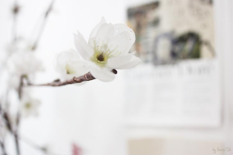 fleurchemineebylouisesk
