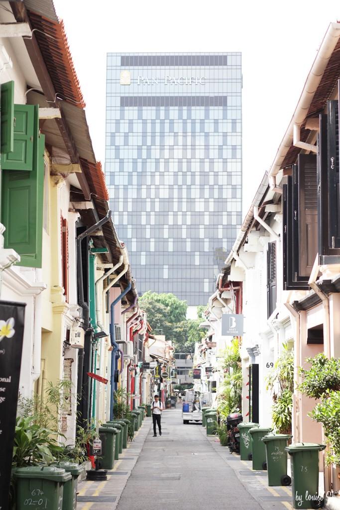 singapourbylouisesk
