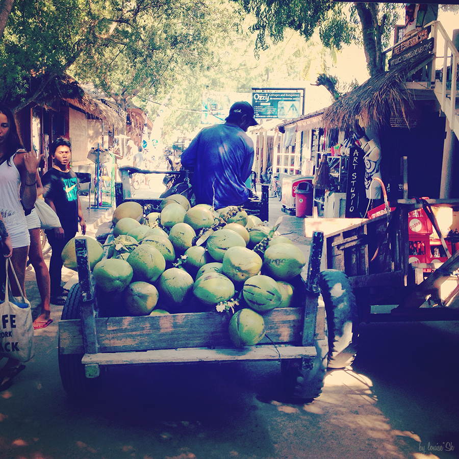 coconutwaterbali-travelbylouisesk