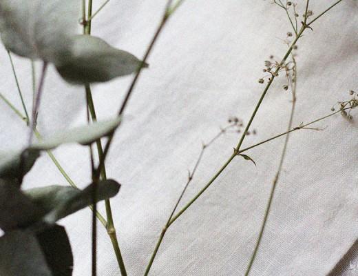lentillescarottestomates3-sansglutenfree-bylouisesk
